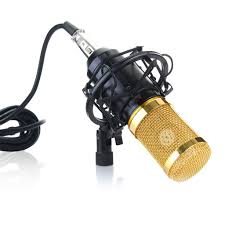 <b>BM</b>-<b>800 Professional Studio</b> Condenser Microphone Review