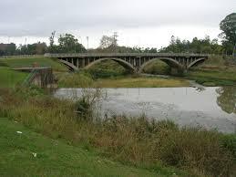 is pollution threatening the msuduzi river biodiversity is pollution threatening the msuduzi river biodiversity environmental sciences essay