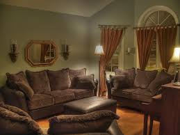 Paint Your Living Room Living Room Wonderful Warm Living Rooms Design With Green Wall