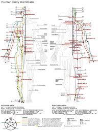 <b>Meridian</b> (<b>Chinese medicine</b>) - Wikipedia