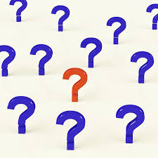 the question leaders often fail to ask mark fenner the question leaders often fail to ask