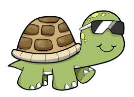Image result for cartoon turtle