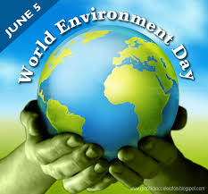 essay for our environment today   essay for you essay for world environment day pictures