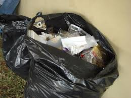 мешки для мусора капио в рулоне пвд 120л 70х110 фиолетовые усиленные 10 штук фиолетовый