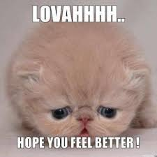 lovahhhh-hope-you-feel-better--thumb.jpg via Relatably.com