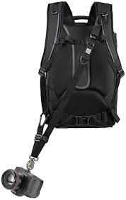 Bags, Cases & Straps - <b>Camera Straps</b> & Holsters - Page 1 - Allen's ...