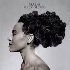 <b>Malia</b> : <b>Black Orchid</b> - Musique en streaming - À écouter sur Deezer