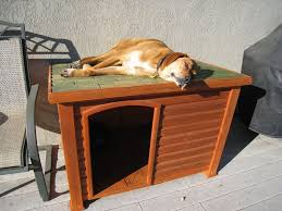 Dog Houses   How To Choose The Best Dog House    Or Build Your    build a dog house