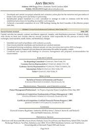 Samples New York Resume Writing Service Resumenewyorkcom Samples New York  Resume Writing Service  business analyst