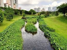 Collaboration on <b>Nature</b>-Based Solutions is <b>Key</b> to Resilient City ...