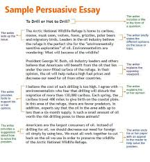persuasive essay community service   speedy paperpersuasive essay community service