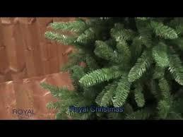ЕЛЬ <b>WASHINGTON PREMIUM ROYAL CHRISTMAS</b> ...