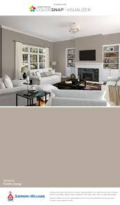 colors living room perfect picture