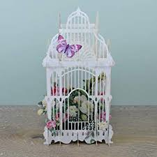 Paper d'Art Flower Cage 3D Pop Up Greeting Card ... - Amazon.com