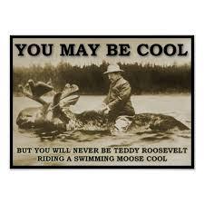 Teddy on a Moose Funny Poster | Zazzle via Relatably.com