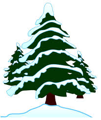 Free Picture Of Evergreen Tree, Download Free Clip Art, Free Clip ...