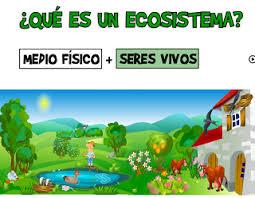 http://www.mundoprimaria.com/juegos-conocimiento-del-medio/juegos-ecosistemas/