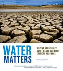 water crisis india   water crisis essay  thingshare cowater crisis essay mrwaterwords