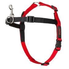 Halti Front <b>Control Harness</b> - Company Of Animals US