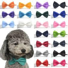 Cute Dog <b>Puppy</b> Cat Bow Tie <b>Fashion Pet</b> Necktie Elegant Bowknot ...