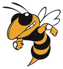 Image result for hornets