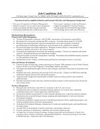 construction project manager resume examples example of a it retail manager cv template project manager resume sample 1000 it director resume examples it manager resume