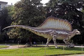 Risultati immagini per immagini spinosauri