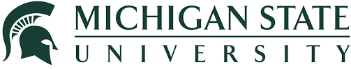 Image result for michigan state