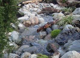 Small Picture Dry Creek Bed Landscaper Lily Pond Designs South Surrey