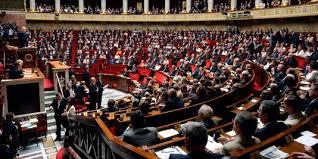 """Résultat de recherche d'images pour """"hémicycle assemblée nationale"""""""