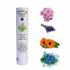 """<b>Растущие карандаши</b> """"Весенний сад"""" подарочный эко набор для ..."""