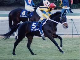<b>Stay Gold</b> (horse) - Wikipedia