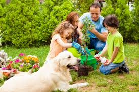 savings institute bank trust bank in connecticut rhode island family planting a tree