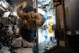 Crew-2 <b>Astronauts</b> Head to ISS to Conduct Microgravity Science ...