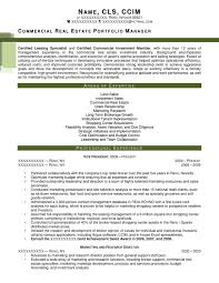 executive resume samples   resume primeafter  commercial real estate portfolio manager resume
