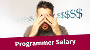 How much money <b>programmers make</b>?