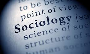 essay on political sociology