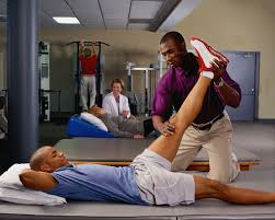 university pre professionals overview of physical therapy as a career
