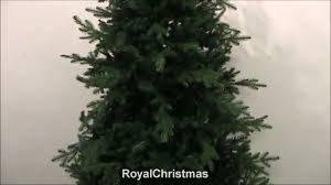 <b>Royal Christmas</b> - Auckland <b>Premium</b> tree - YouTube