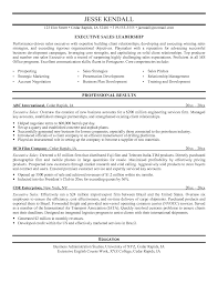 retail s executive resume sample retail executive resume ceo retail s executive resume sample