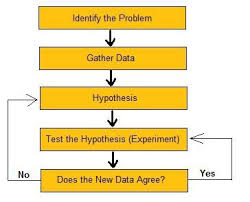 this essay is about the scientific method and how to follow its  english flowchart of the steps in the scientific method