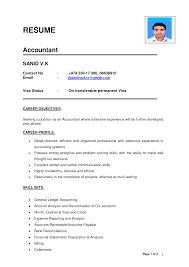 ideal resume format      resume format sample  sample cv resume    rsvpaint resume templates  n   rsvpaint