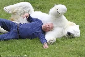 Urso Polar VS Tigre Siberiano Images?q=tbn:ANd9GcSWdD0t6HyDTM147EChnyNW3Oa_NW3LYllb0zE1tMGZEOkV6nPERA