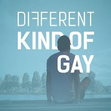 Different Kind Of Gay