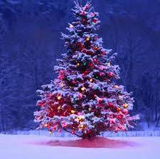 an essay on christmas for students kids and children essay on christmas