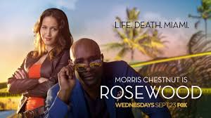 Image result for rosewood tv show