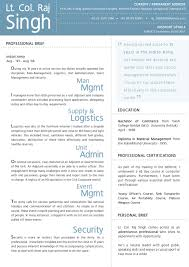 creative director resume com creative director hybrid content resume onlines portfolio wb3oostu