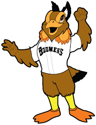 Image result for schaumburg boomers logo