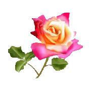Neuvaine au Coeur Sacré de Jésus / Belle fête du Sacré Coeur à tous Images?q=tbn:ANd9GcSXI3R_rdXb47gjvUTqZZ91O3VJ9F_kRrocx6mj1zOsZ4JsxwEy