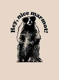 <b>Hey</b> Nice <b>Marmot T</b>-<b>Shirts</b> | Redbubble